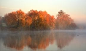 autumn love…