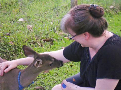 My Little Deer Friend